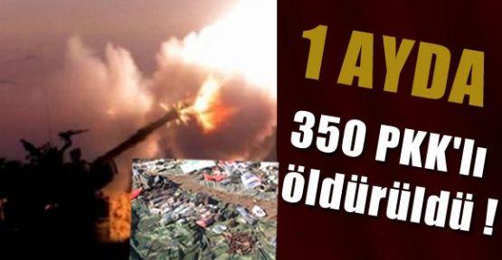 1 Ayda 350 PKK'lı öldürüldü !