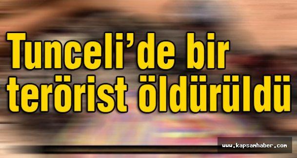 Tunceli'de bir terörist öldürüldü