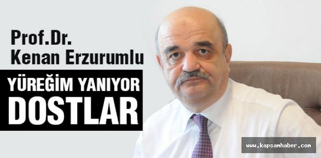 Prof.Dr.Erzurumlu: Yüreğim Yanıyor Dostlar