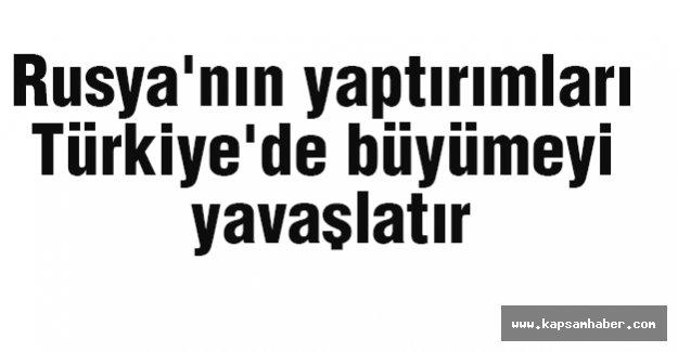 Rusya'nın yaptırımları Türkiye'de büyümeyi yavaşlatır