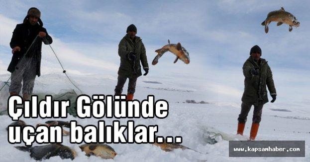 Çıldır Gölünde uçan balıklar...