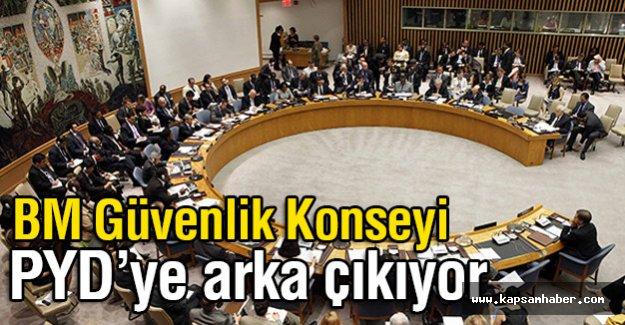BM Güvenlik Konseyi PYD'ye Arka Çıkıyor