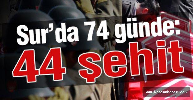 Sur'da 74 günde  44 şehit!