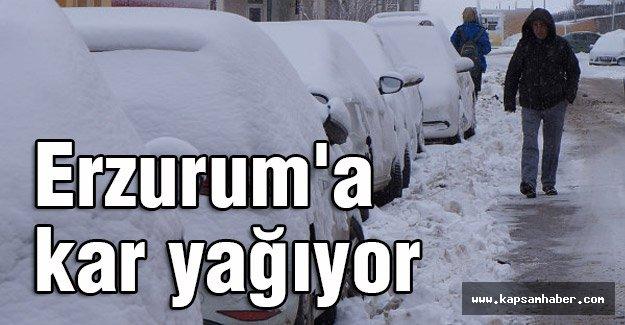 Erzurum'a kar yağıyor...