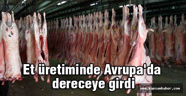 Türkiye, et üretiminde Avrupa'da dereceye girdi