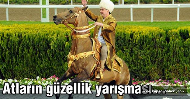Atların güzellik yarışması...