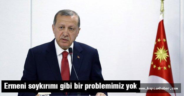 'Bizim, sözde Ermeni soykırımı gibi bir problemimiz yok'