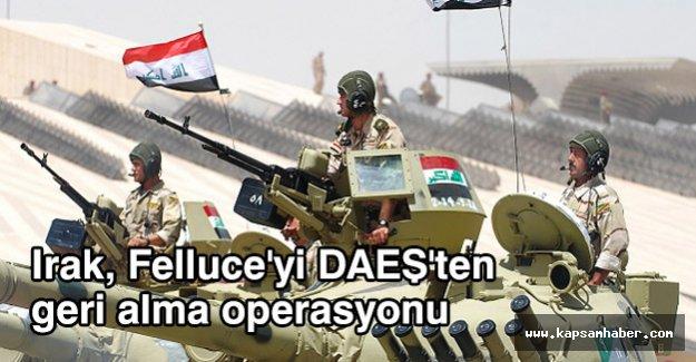 Irak, Felluce'yi DAEŞ'ten geri alma operasyonu