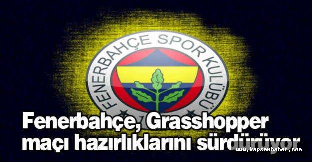 Fenerbahçe, Grasshopper maçı...