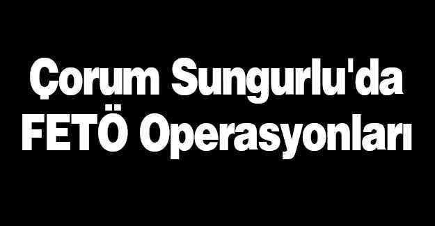 Sungurlu'da FETÖ Operasyonları