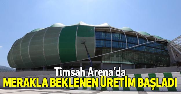 Timsah Arena'da Meraklandın Üretim Başladı