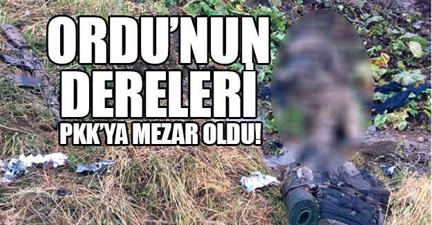 Ordu'nun Dereleri PKK'ya Mezar Oldu