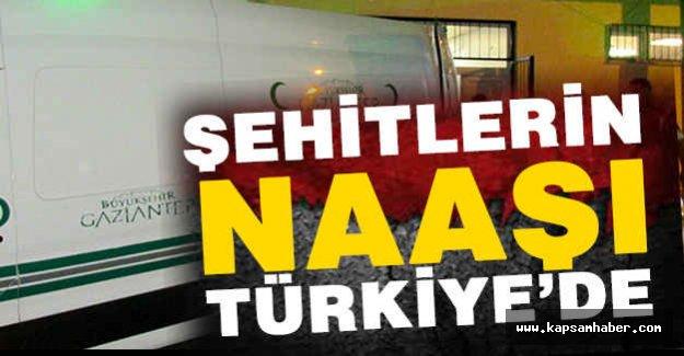 Şehitlerin Naaşı Türkiye'de