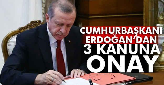 Erdoğan, Bu 3 Kanunu Onayladı