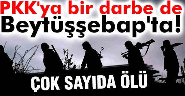 Şırnak'ta 11 PKK'lı öldürüldü