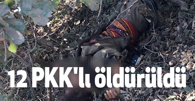 Hakkari'de 12 PKK'lı öldürüldü