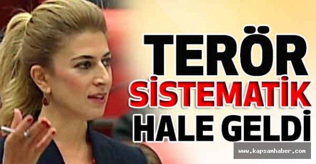 """CHP'li vekilden hükümete """"terör"""" eleştirisi"""