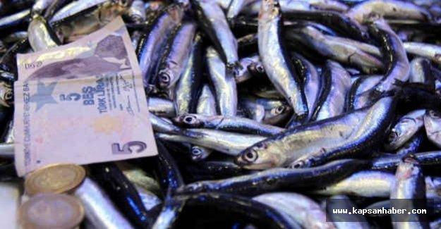 Samsun'da Hamsi fiyatları 2 kat arttı