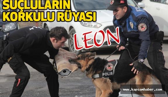 """Adana'da """"Leon"""" Suçluların Korkulu Rüyası Oldu"""