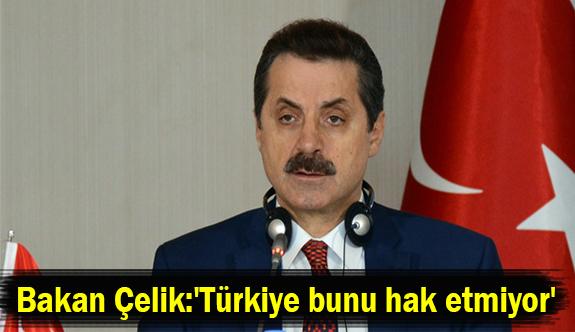 Bakan Çelik:'Türkiye bunu hak etmiyor'