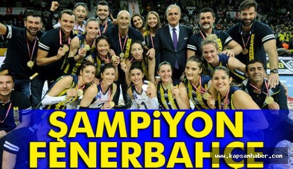 Şampiyon Fenerbahçe...