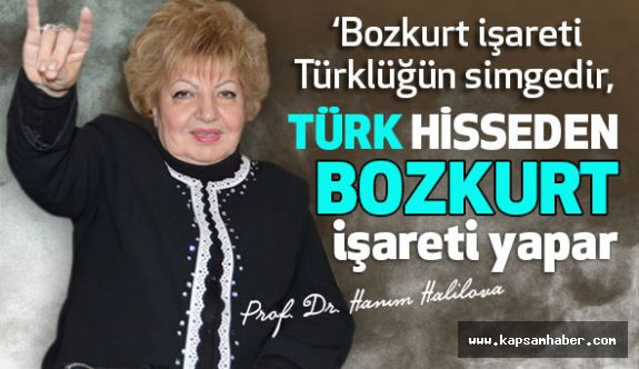 Prof. Dr. Hanım Halilova; Bozkurt İşareti Türklüğün Simgesidir