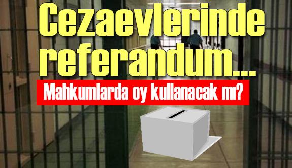 Cezaevlerinde referandum...