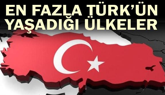 En Fazla Türk Hangi Ülkede Yaşıyor?