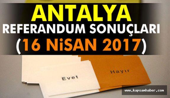 ANTALYA Referandum Sonuçları belli oldu