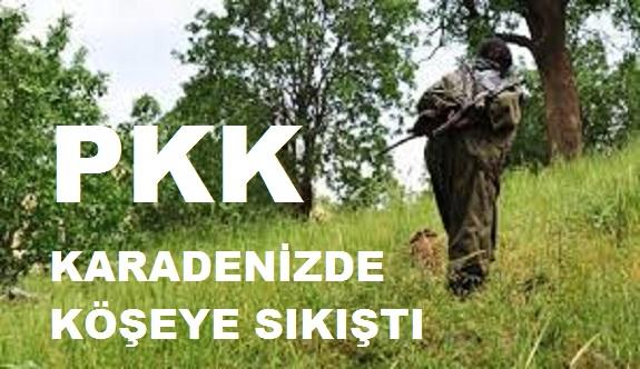 Karadeniz'deki PKK'lı teröristler köşeye sıkıştırıldı