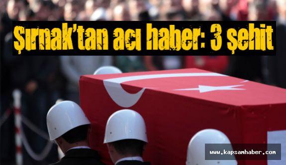 PKK'lı Teröristler Askerlerimize Saldırdı: 3 Şehit