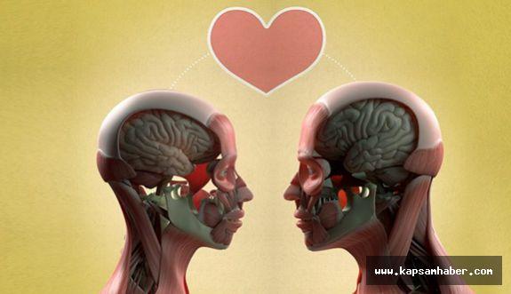 Aşk Kimyasal Bir Büyüdür