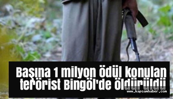 Başına 1 Milyon Ödül Konulan Terörist Öldürüldü