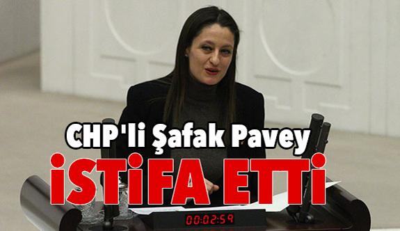 CHP'li Şafak Pavey İstifa Etti!