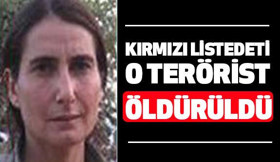 Kırmızı Listede İsmi Bulunan PKK'lı Terörist Öldürüldü