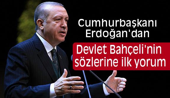 Erdoğan, Bahçeli'nin Sözlerine Ne Dedi?