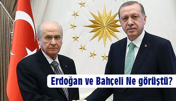 Erdoğan ve Bahçeli Ne Görüştü?