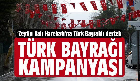 MHP'li Başkandan, Zeytin Dalı Harekatı'na Türk Bayraklı Destek