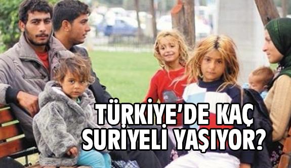 Türkiye'de Ne Kadar Suriyeli Var?