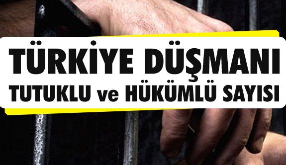 İşte Türkiye Düşmanı Tutuklu ve Hükümlü Sayısı...