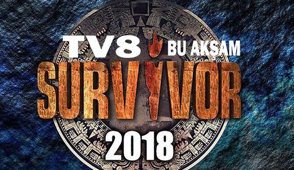 Survivor 2018 Bu Akşam TV8'de (Survivor 2018 canlı izle)