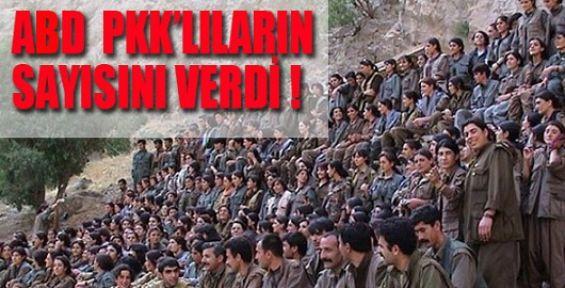 ABD PKK'lıların Sayısını Verdi