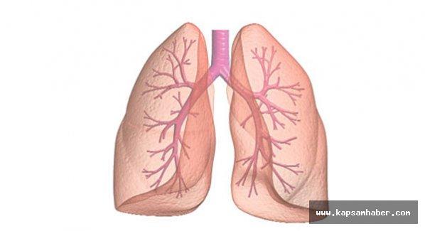 Akciğer nakli Türkiye'de de yaygınlaşıyor