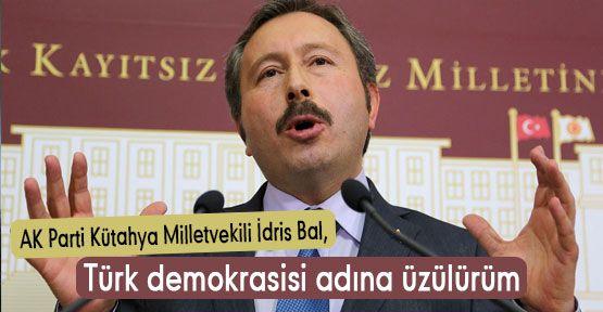 AKP'li  Bal: Türk demokrasisi adına üzülürüm
