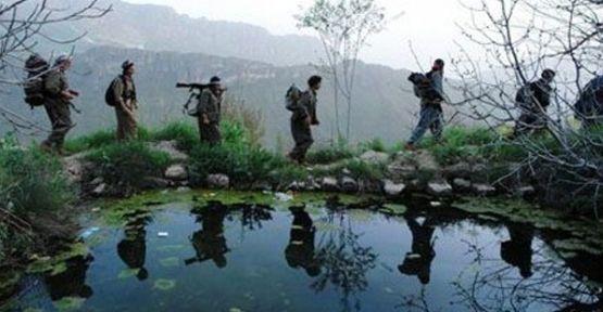 AKP'li Vekil:'Hasta ve Yaşlı PKK'lılar Çekiliyor'