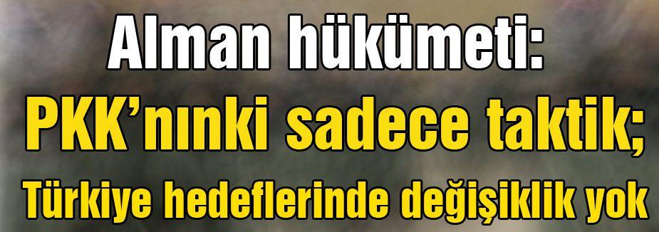 Almanya: 'PKK'nınki sadece taktik...'