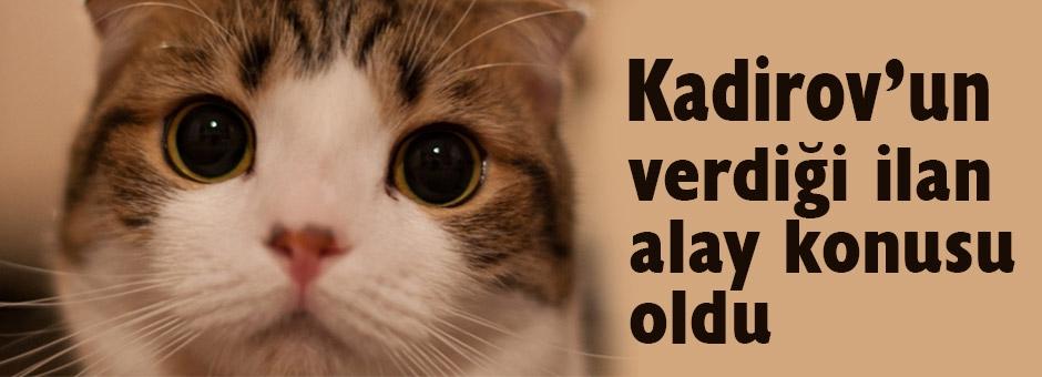 Kadirov'un verdiği ilan alay konusu oldu