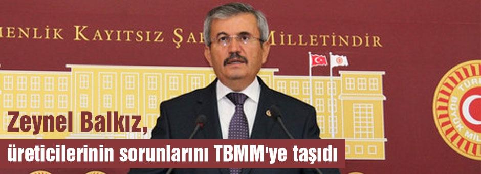 MHP'li Balkız; üreticilerin sorunlarını TBMM'ye taşıdı