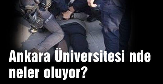 Ankara Üniversitesi nde neler oluyor?