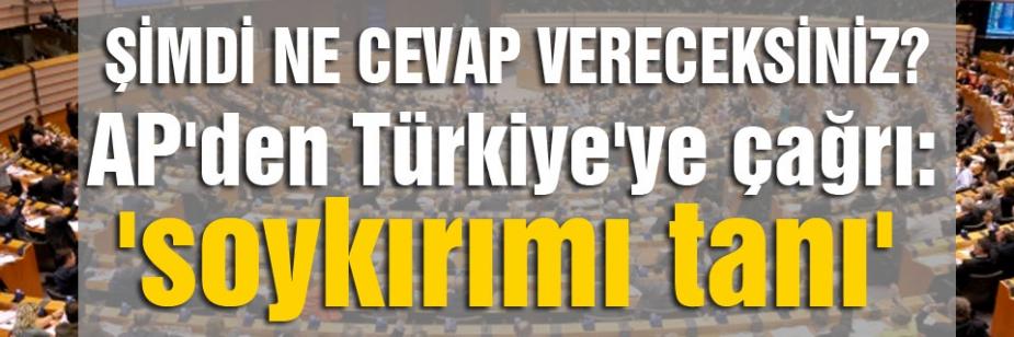 AP'den Türkiye'ye çağrı: 'soykırımı tanı'